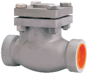 886 Series - Stainless Steel Swing Check Valves