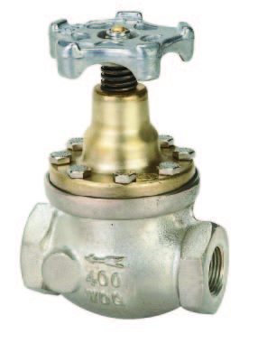 Diaphragm Globe Valves 2500 Series