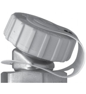 Cap & Strap - AFV Series Double Back Check Valve