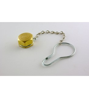 Dust Cap & Chain Assembly