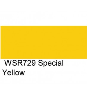 1 GALLON - SPECIAL YELLOW